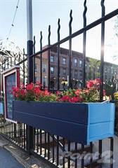 Apartment for rent in 335 Carroll Apartments - 1.5 Bedroom, 1 Bath, Brooklyn, NY, 11231