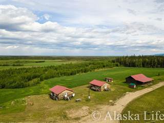 Single Family for sale in Nenana 315 PARKS HIGHWAY Mile Post 315, Nenana, AK, 99760