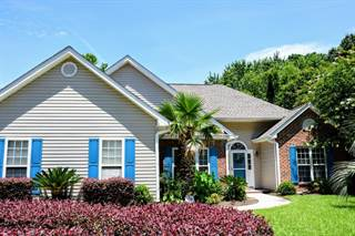 Single Family for sale in 1143 Black Rush Circle, Mount Pleasant, SC, 29466