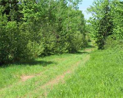 Lots And Land for sale in TBD Norwich Rd, Wakefield, MI, 49968