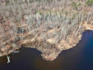 Land for Sale Lake of the Woods County, MN - Vacant Lots for
