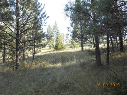 Lots And Land for sale in 00 Tree Top, Roundup, MT, 59079