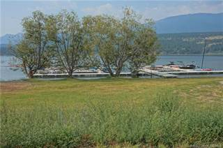 Land for sale in 4686 WINDERMERE ROAD, Windermere, British Columbia