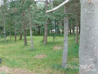 Land for sale in 443 Water Street, Bay Roberts, Newfoundland and Labrador