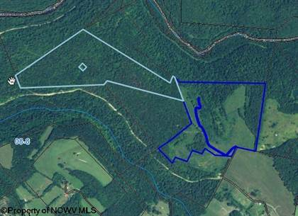 Farm And Agriculture for sale in 00 Little Sandy Road, Bruceton Mills, WV, 26525