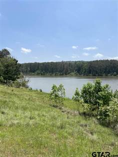 Lots And Land for sale in LOT 12 ACR 450, Palestine, TX, 75803