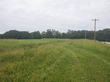 Lots And Land for sale in 000 North Farm Road 199, Greater Turners, MO, 65802