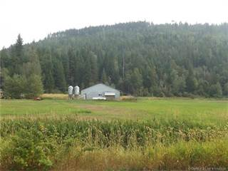 Farm And Agriculture for sale in 3820 Malakwa Loop Road,, Malakwa, British Columbia