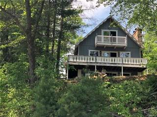 Single Family for sale in 6341 Eagles Nest, Moffatt, MI, 48610
