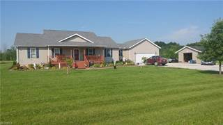 Single Family for sale in 3381 Knowlton Rd, Rock Creek, OH, 44084