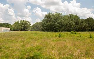 Comm/Ind for sale in TBD US HWY 19, Old Town, FL, 32680