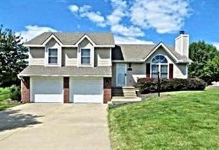Single Family for sale in 104 Somerset Drive, Gower, MO, 64454