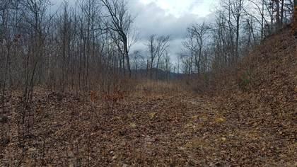 Lots And Land for sale in 1273 Safari Drive 60, Sylva, NC, 28779