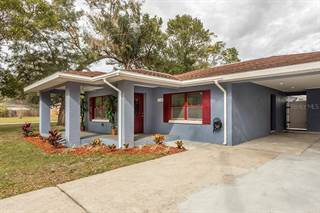 Single Family for sale in 5128 PARADE STREET, Tampa, FL, 33617