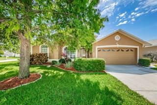 Single Family for sale in 3058 LAHLOR LANE, Palm Harbor, FL, 34684