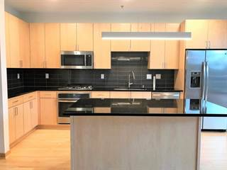 Condo for sale in 1240 2nd Street 217, Minneapolis, MN, 55402