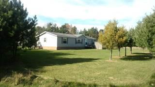 Single Family for sale in 285 Clark, Crystal Falls, MI, 49920