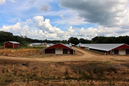 Farm And Agriculture for sale in No address available, Wesson, MS, 39191