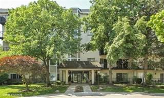 Condo for sale in 8630 Waukegan Road 114, Morton Grove, IL, 60053