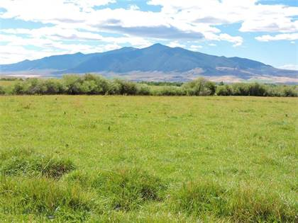Farm And Agriculture for sale in Tbd Indian Creek Road, Sheridan, MT, 59749