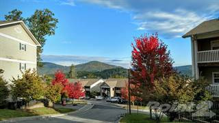 Apartment for rent in Village of Meadowview Apartments, Boone, NC, 28607