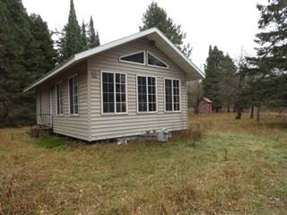 Single Family for sale in 24494 LP Walsh, White Pine, MI, 49971