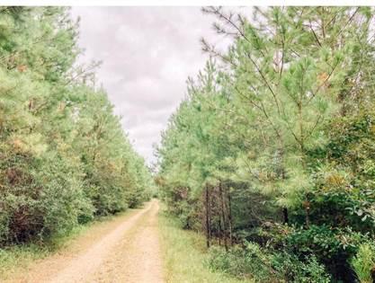 Lots And Land for sale in 00 Ervin Ladner Road, Poplarville, MS, 39470