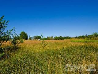 Farm And Agriculture for sale in 2088 Anderton Road, Little River, British Columbia