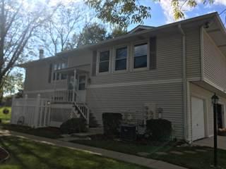 Condo for sale in 5341 Crescent Lane B, Oak Forest, IL, 60452