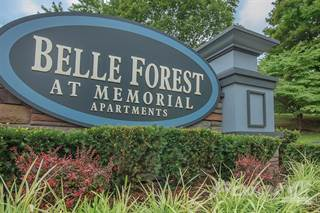 Apartment for rent in Belle Forest at Memorial, Clarksville, TN, 37043
