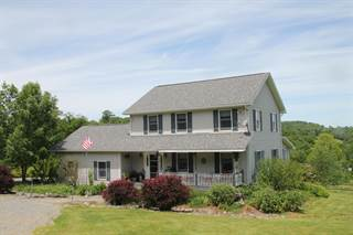 Single Family for sale in 45 Steiner Rd, Damascus, PA, 18415