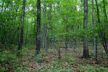 Lots And Land for sale in OVERLOOK RD 78, Monterey, VA, 24465