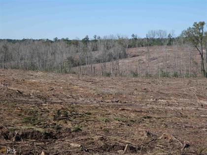 Farm And Agriculture for sale in 0 Little Sandy Creek Rd, Toomsboro, GA, 31090