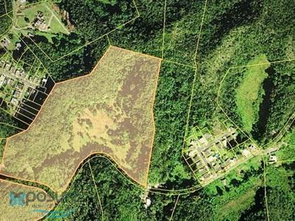 Residential Property for sale in 667 BO. FLORIDA AFUERA CARR 667 KM 1.0, Florida Adentro, PR, 00650
