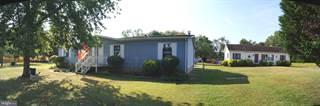 Single Family for sale in 27269 WHITELEYSBURG ROAD, Greensboro, MD, 21639