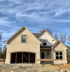 Single Family for sale in 26 Bentley Meadows, Clarksville, TN, 37043