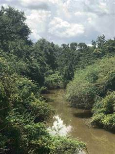 Lots And Land for sale in 0000 HWY 35 HWY, Mount Olive, MS, 39119