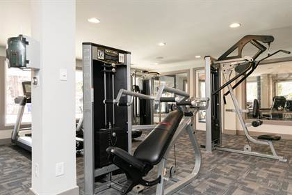 Apartment for rent in 6701 Winterbrook Court, Atlanta, GA, 30360