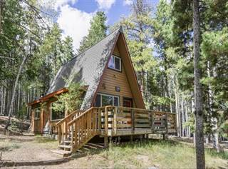 Single Family for sale in 319 Deer Road, Evergreen, CO, 80439
