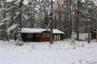 Single Family for sale in 345 Ironwood Road, Higgins Lake, MI, 48653