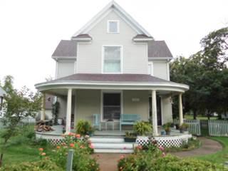 Single Family for sale in 404 SOUTH Avenue, Greenville, IL, 62246