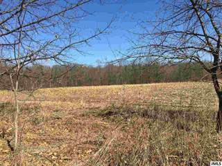 Farm And Agriculture for sale in 6266 SPRINGPORT RD, Jackson, MI, 49201