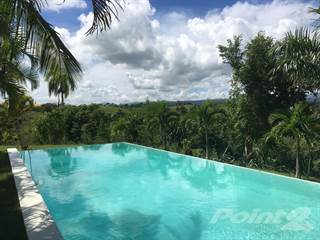 Dominican Republic Real Estate Homes For Sale In Dominican - Incredible swimming pool cost 2000000