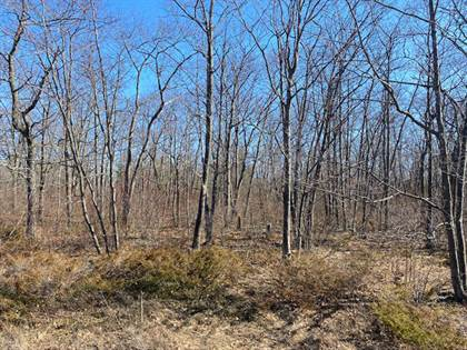 Lots And Land for sale in Highland Pines Road Lot 129, Presque Isle, MI, 49777