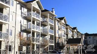 Apartment for rent in Solara at Skyview - Various Suites Now Available!, Edmonton, Alberta