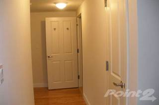 Apartment for rent in 1970—121-125 Development Realty LLC - 2Bed1Bath, Manhattan, NY, 10029