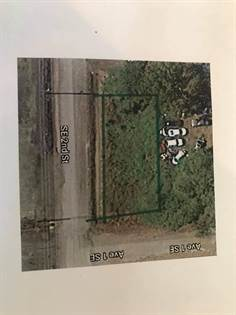Lots And Land for sale in SE 2nd Street, Atkins, AR, 72823