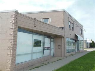 Comm/Ind for sale in 30177 GRATIOT Avenue, Roseville, MI, 48066