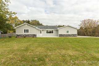 Single Family for sale in 1439 144th Avenue, Dorr, MI, 49323