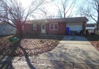 Single Family for sale in 45 Drucker Lane, Old Monroe, MO, 63369
